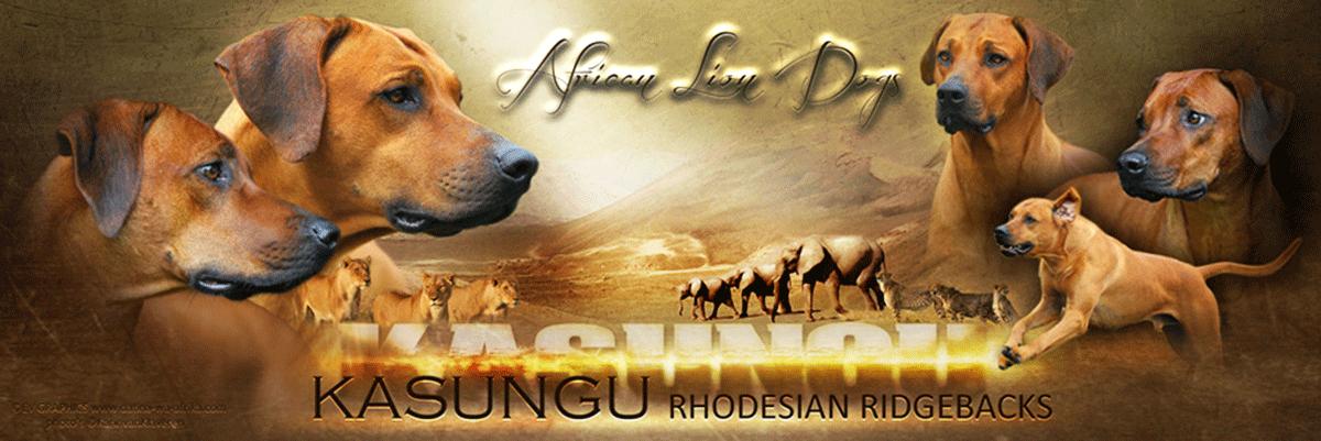 KASUNGU | Rhodesian Ridgeback Züchter | Essen | NRW | VDH Logo